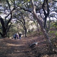 Mt Woodson Nov 2014